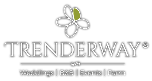 Trenderway Logo